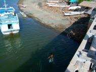 Asisbiz Kids diving of Naujan Estrella bridge Oriental Mindoro Philippines Feb 2006 37