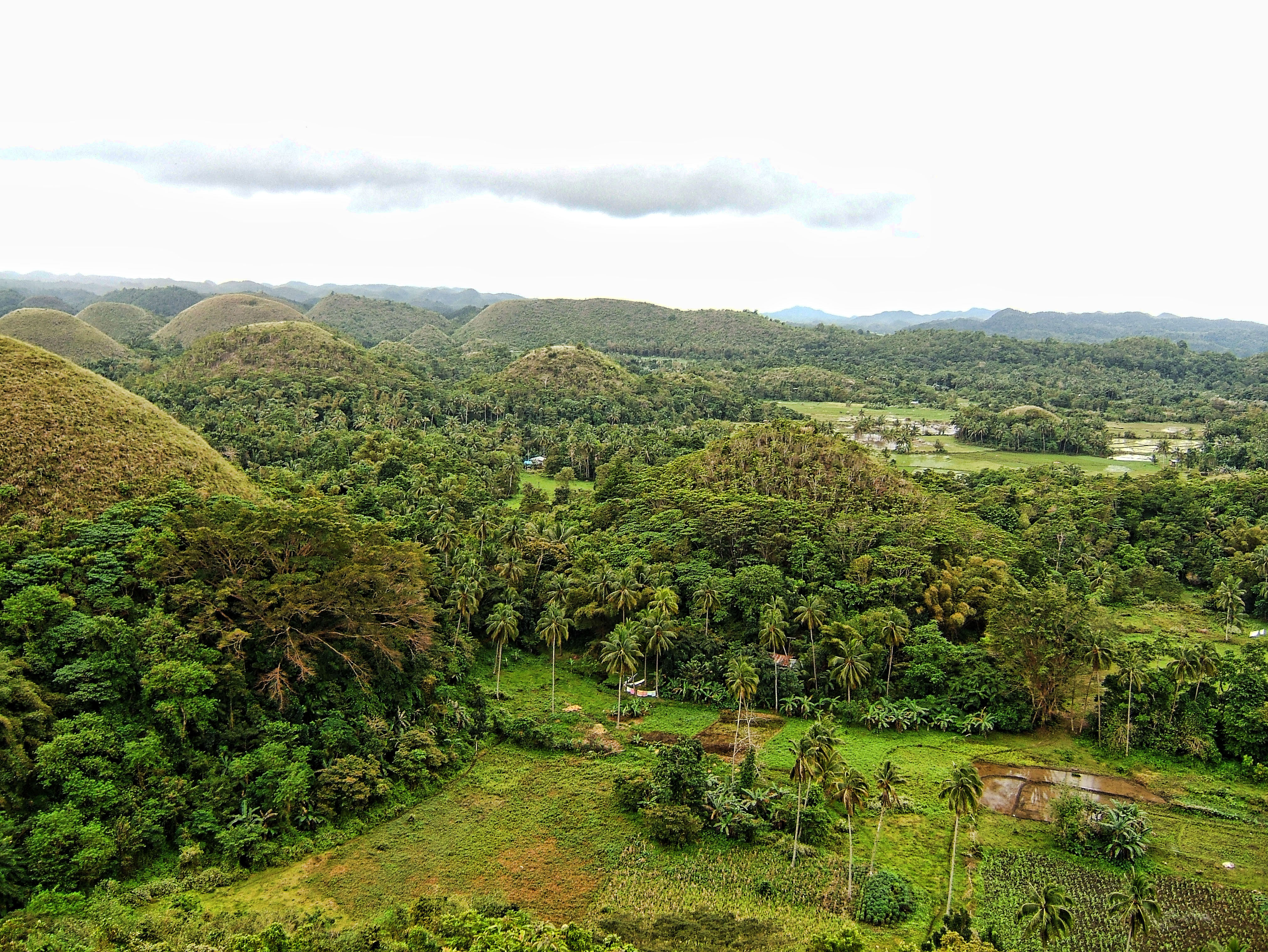 Philippines Sagbayan Batuan Carmen Bohol Chocolate Hills Dec 2005 09