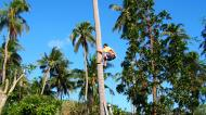 Asisbiz Attaching the guide rope and removing the top Tabinay Oriental Mindoro Philippines 02