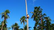 Asisbiz Attaching the guide rope and removing the top Tabinay Oriental Mindoro Philippines 04