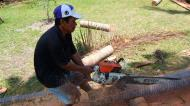 Asisbiz Step by step guide on how to cut straight using chainsaw removing the bark Philippines 01