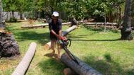 Asisbiz Step by step guide on how to cut straight using chainsaw to produce coco lumber Philippines 03