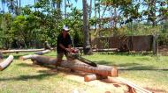 Asisbiz Step by step guide on how to cut straight using chainsaw to produce coco lumber Philippines 07