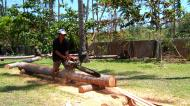 Asisbiz Step by step guide on how to cut straight using chainsaw to produce coco lumber Philippines 08