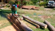 Asisbiz The master shows step by step how to cut straight using chainsaw to produce coco lumber Philippines 03