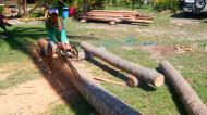 Asisbiz The master shows step by step how to cut straight using chainsaw to produce coco lumber Philippines 04