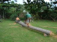 Asisbiz Turning logs into useful lumber beams note the safety equipment but what skill Tabinay Philippines 01