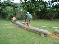 Asisbiz Turning logs into useful lumber beams note the safety equipment but what skill Tabinay Philippines 03