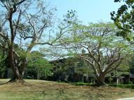 Asisbiz Philippines Corregidor Island barrack and hospital ruins Jan 2005 05
