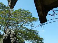 Asisbiz Philippines Corregidor Island barrack and hospital ruins Jan 2005 13