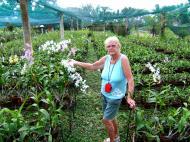 Asisbiz Cebu Moalboal Orchid Farm Dec 2005 07