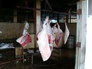 Asisbiz the slaughterhouse Cebu Moalboal Dec 2005 02