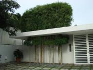 Asisbiz Philippines Manila Muntinlupa Ayala Alabang Homes 2008 20