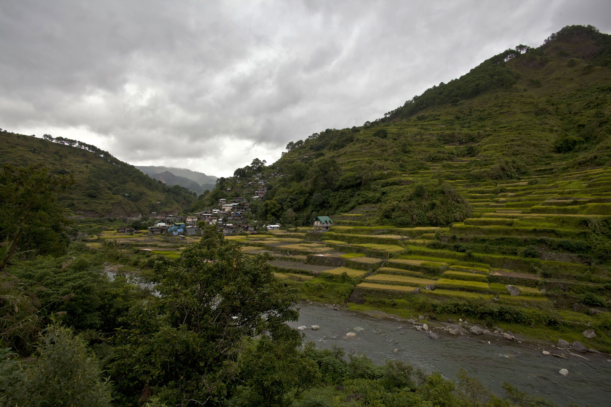 Panoramic views along the Kabayan Rd Halsema Highway from Baguio to Sagada Aug 2011 10