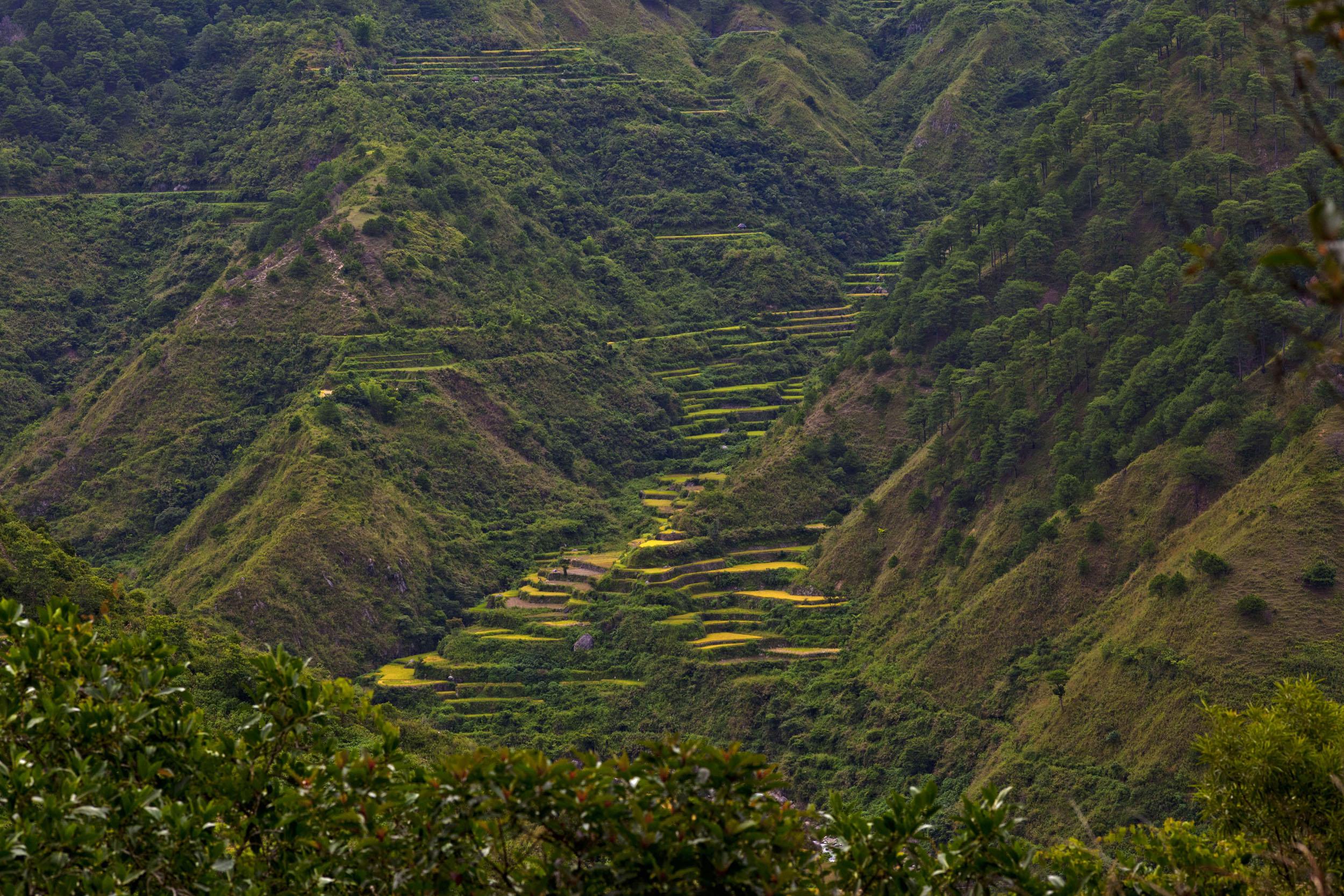 Panoramic views along the Kabayan Rd Halsema Highway from Baguio to Sagada Aug 2011 20