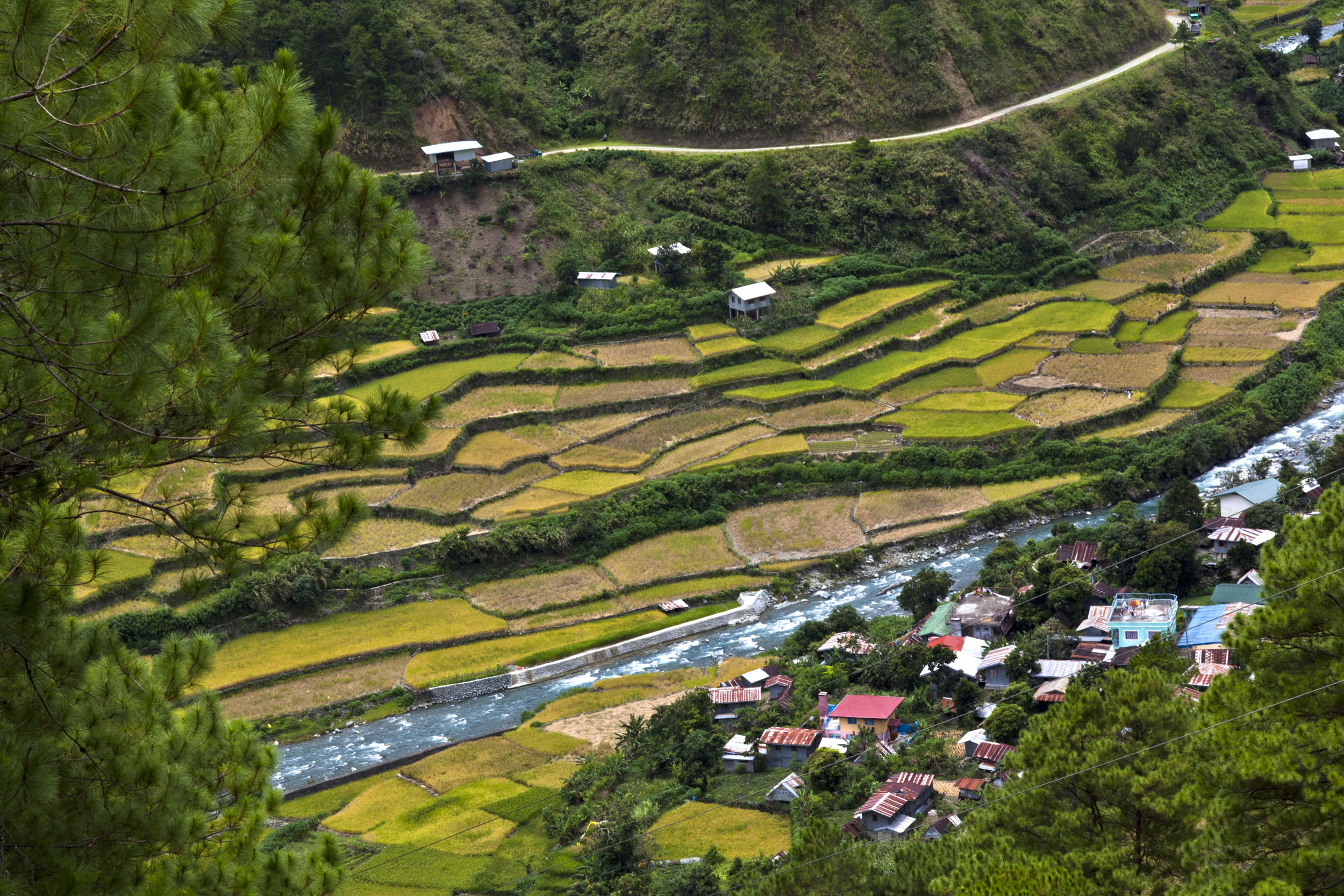Panoramic views along the Kabayan Rd Halsema Highway from Baguio to Sagada Aug 2011 42