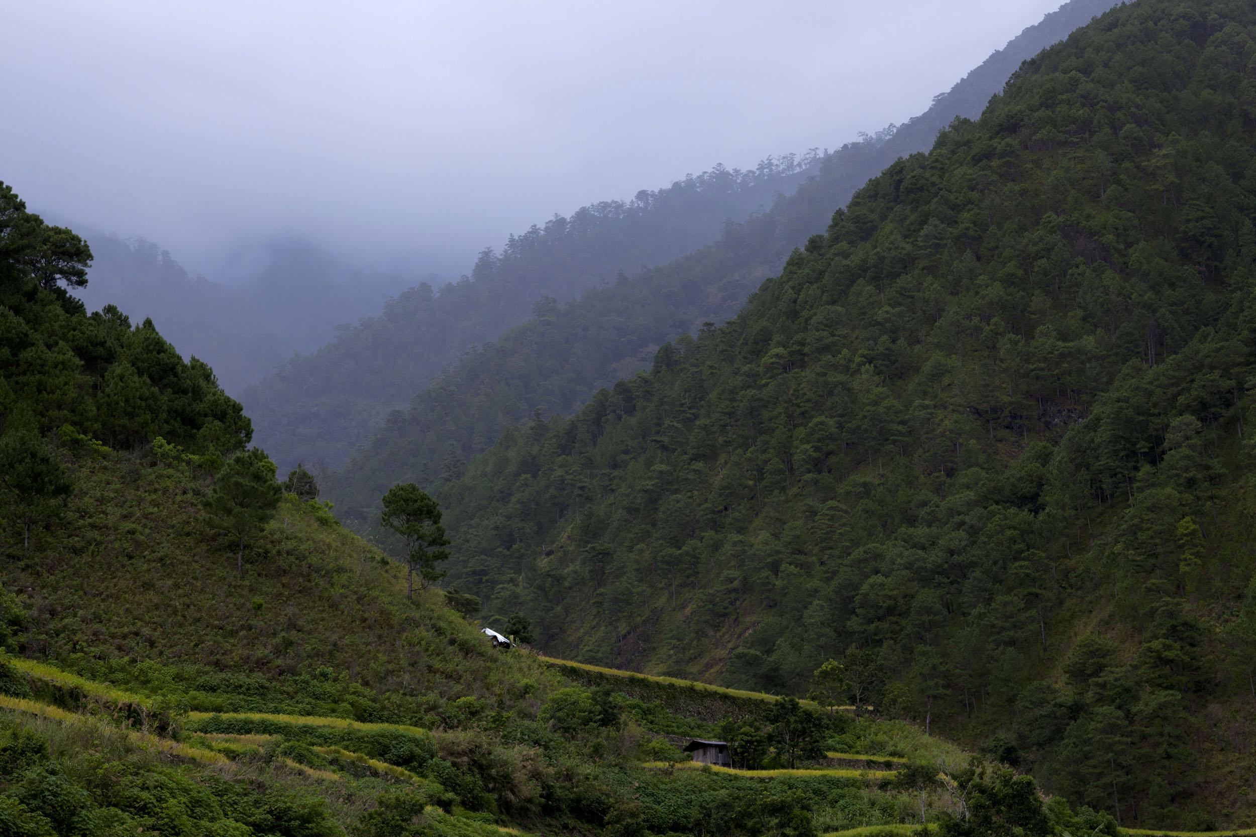 Panoramic views along the Kabayan Rd Halsema Highway from Baguio to Sagada Aug 2011 60