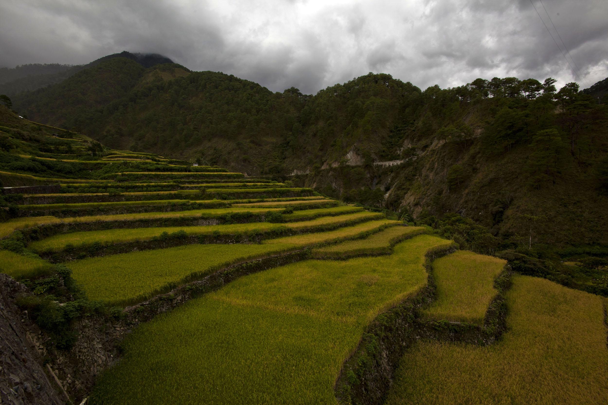 Panoramic views along the Kabayan Rd Halsema Highway from Baguio to Sagada Aug 2011 61