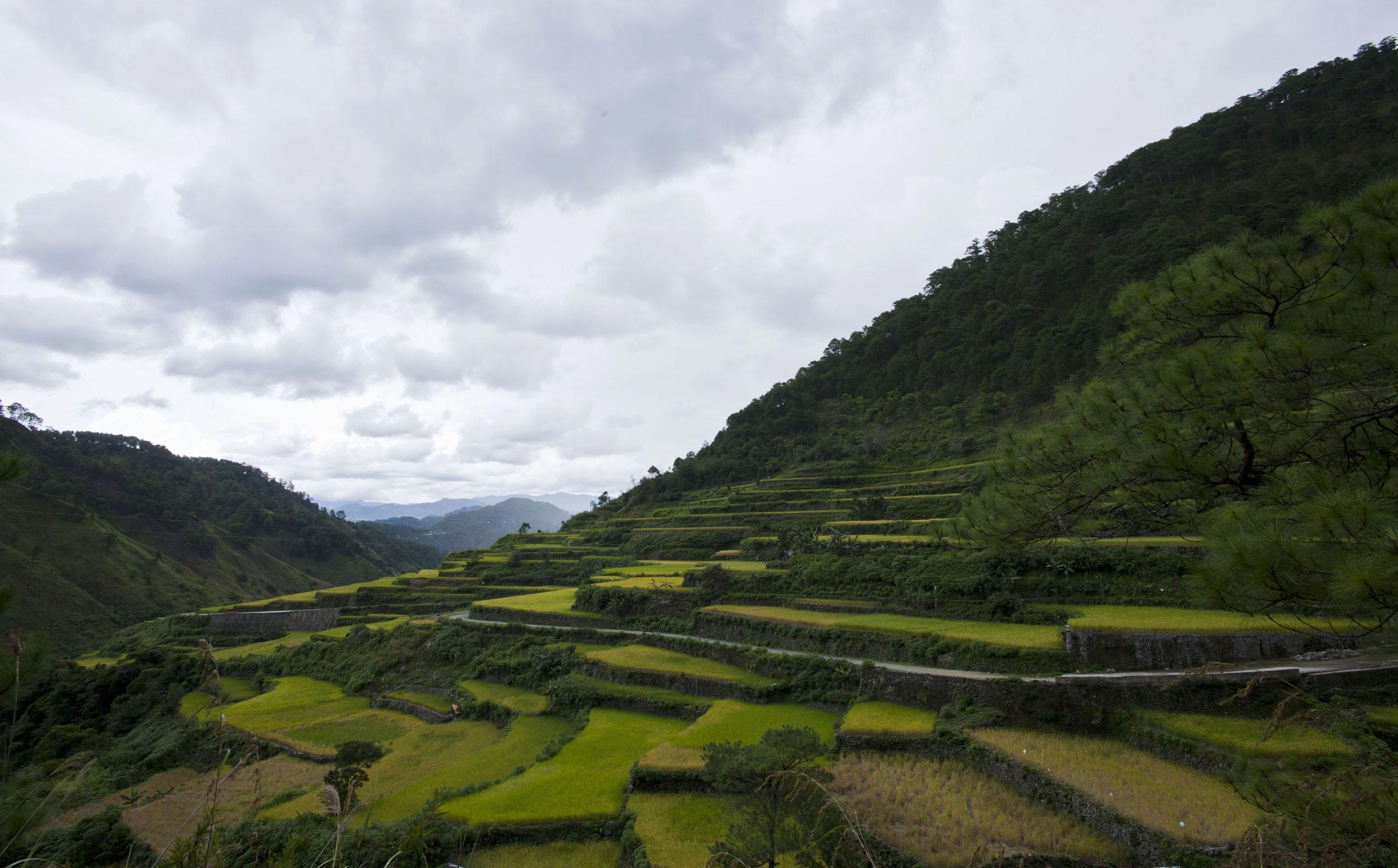 Panoramic views along the Kabayan Rd Halsema Highway from Baguio to Sagada Aug 2011 62