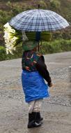 Asisbiz Carring flowers along the Kabayan Rd Halsema Highway from Baguio to Sagada Aug 2011 01