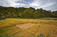 Asisbiz Panoramic views along the Kabayan Rd Halsema Highway from Baguio to Sagada Aug 2011 32