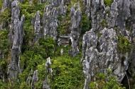 Asisbiz Sagada hanging coffins Mountain Province northern Philippines Aug 2011 06