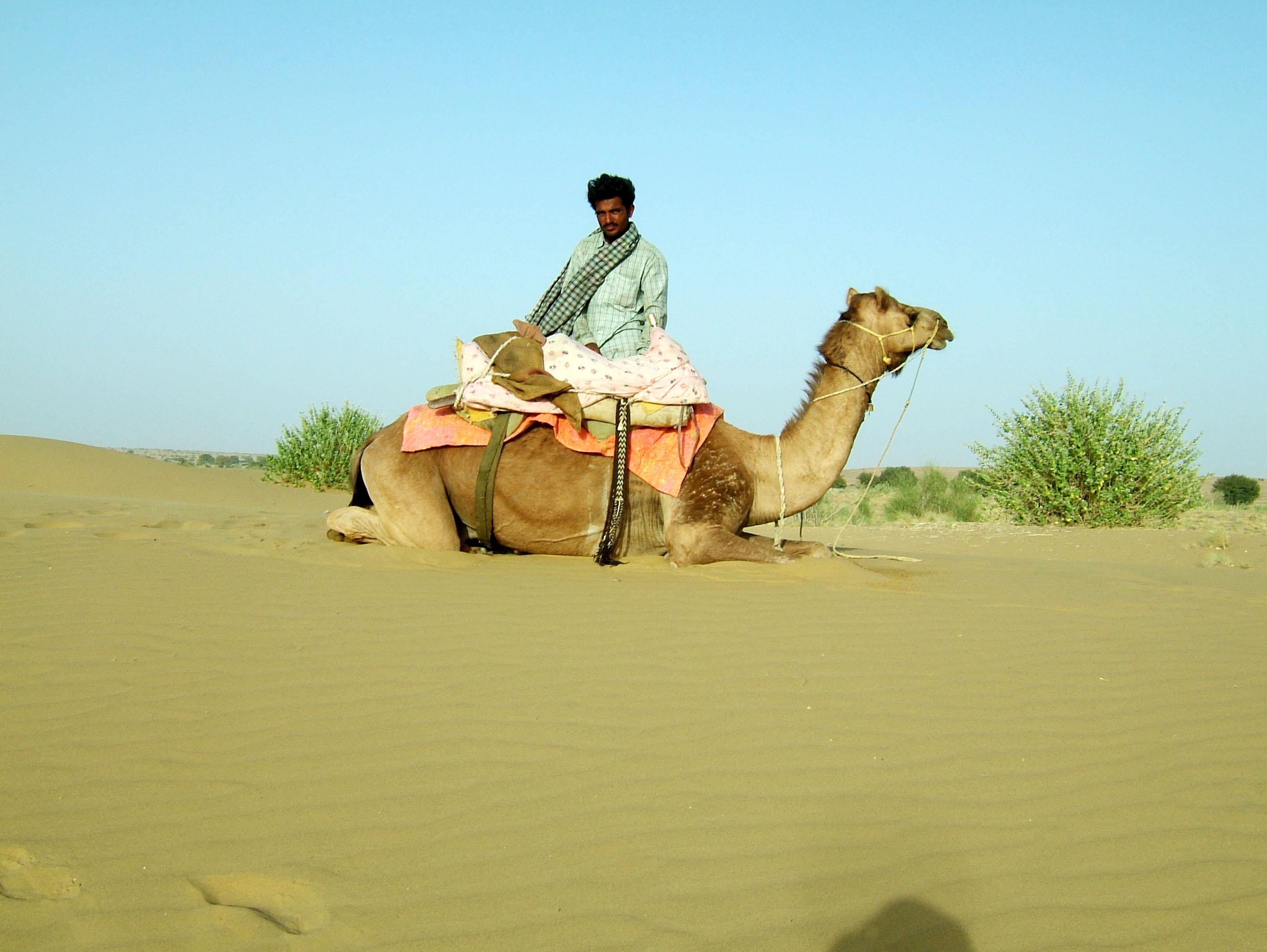 Camel Safari India Rajasthan Jaisalmer 20