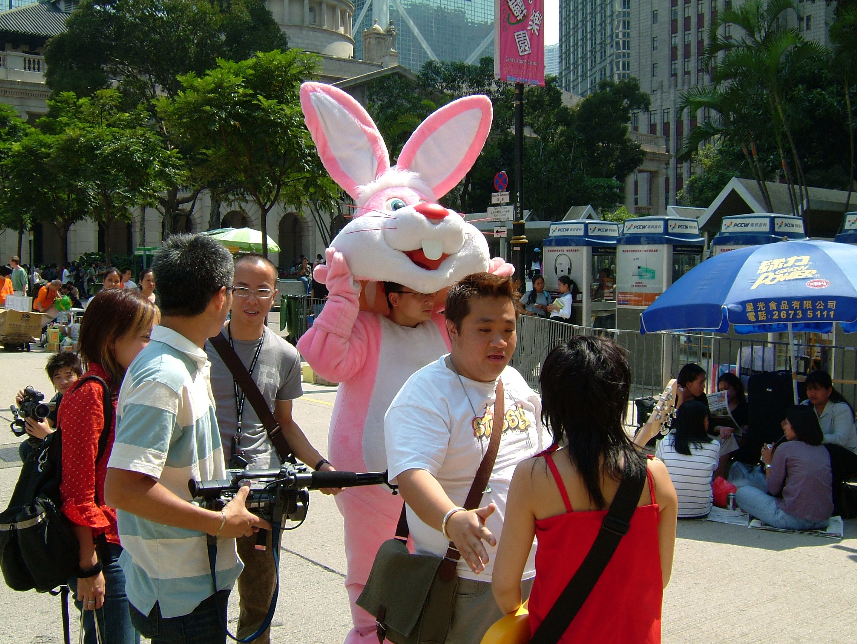 Pink Rabbit Hong Kong 01