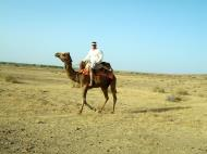 Asisbiz Camel Safari India Rajasthan Jaisalmer 05
