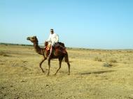 Asisbiz Camel Safari India Rajasthan Jaisalmer 06