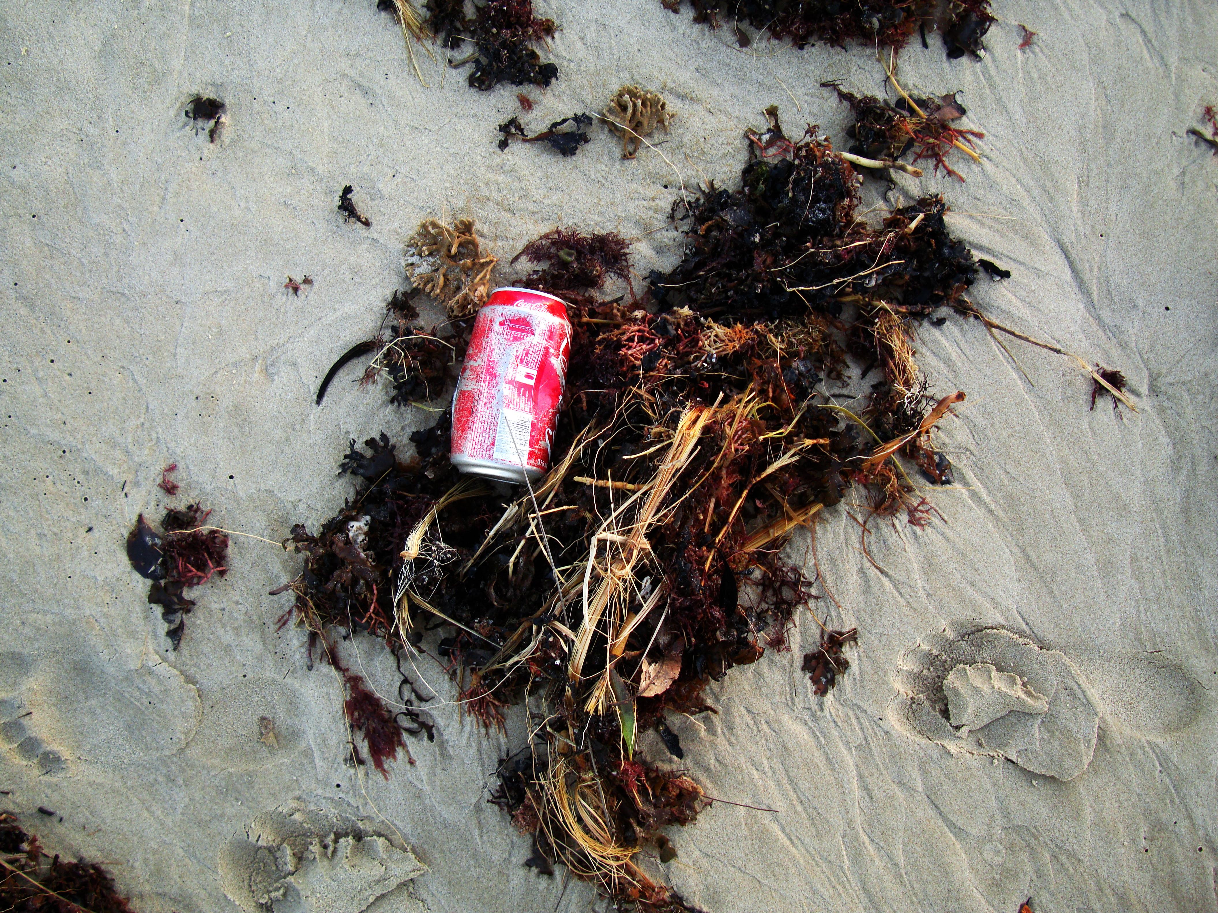Textures Beach Life polution Noosa 01