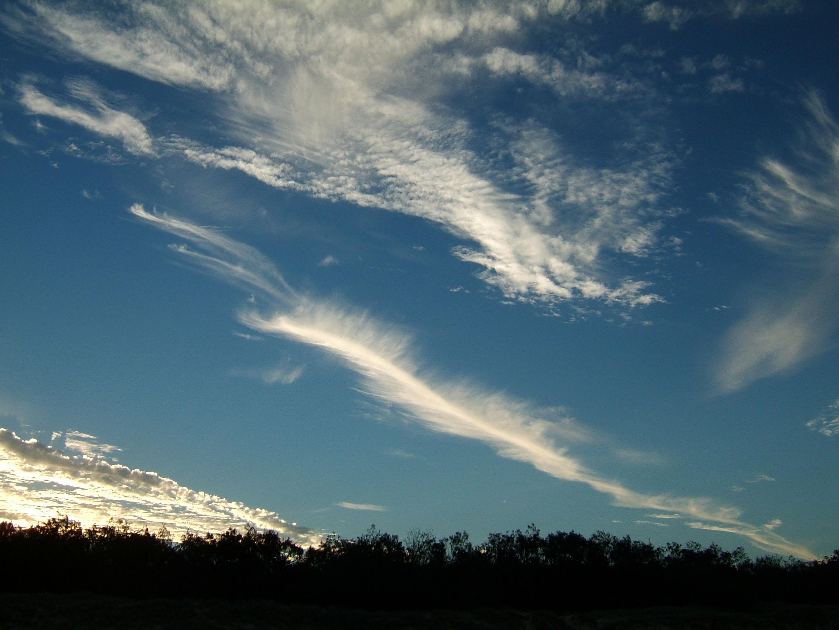 Marcus Vissions Cirrus clouds Feb 2002 01