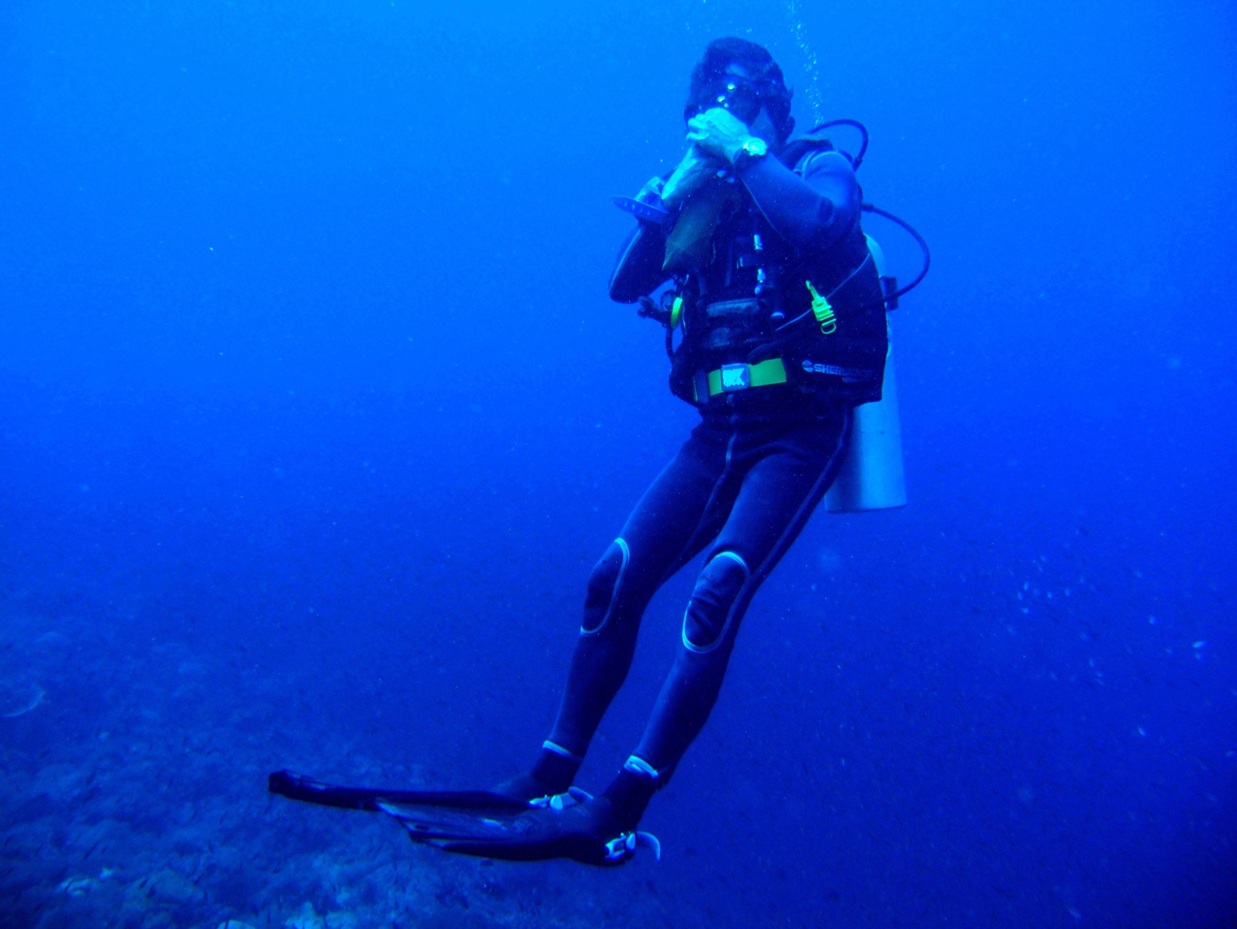 Dive 28 Philippines Mindoro Verdi Island June 2005 01