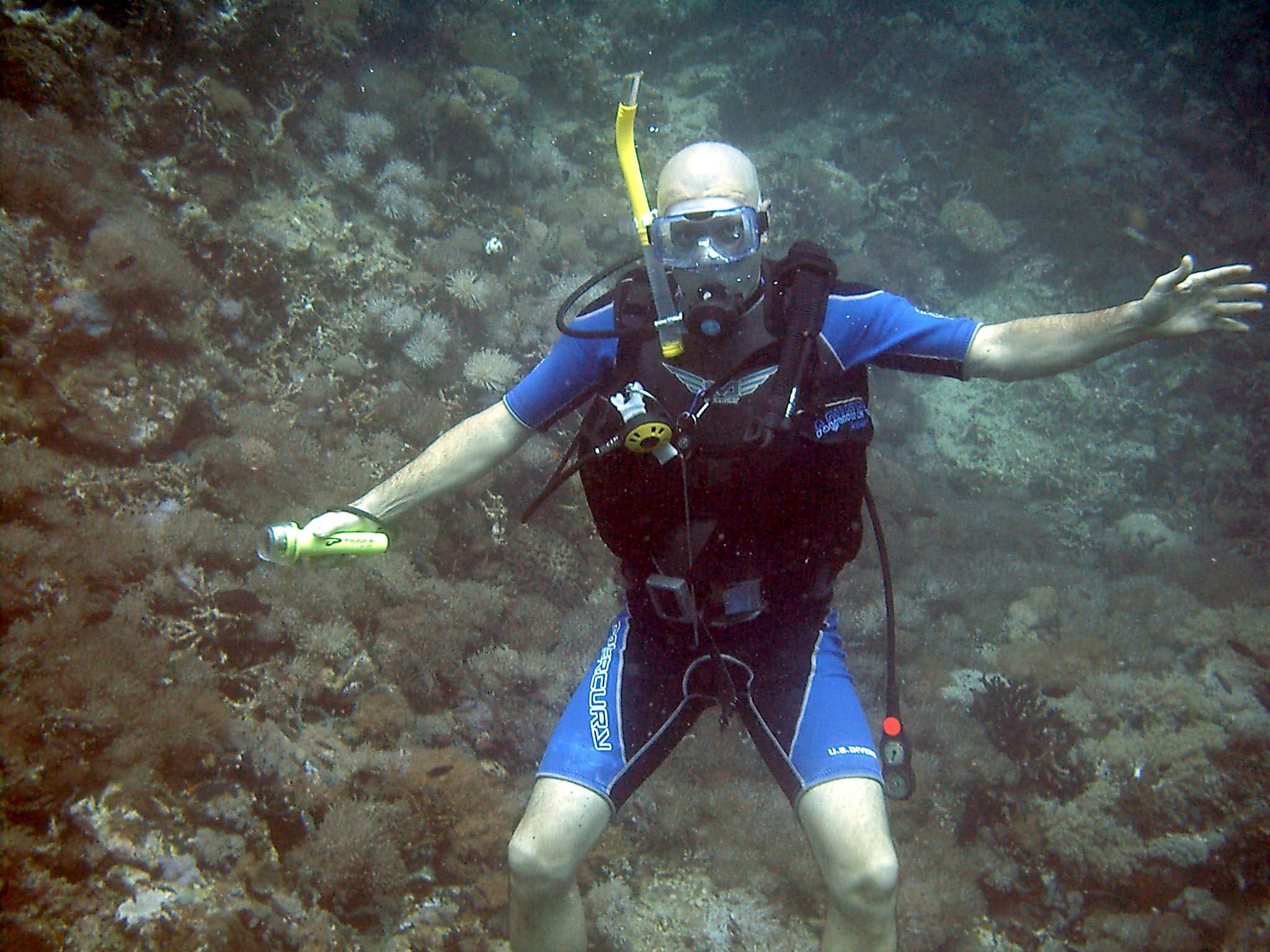 Dive 28 Philippines Mindoro Verdi Island June 2005 36