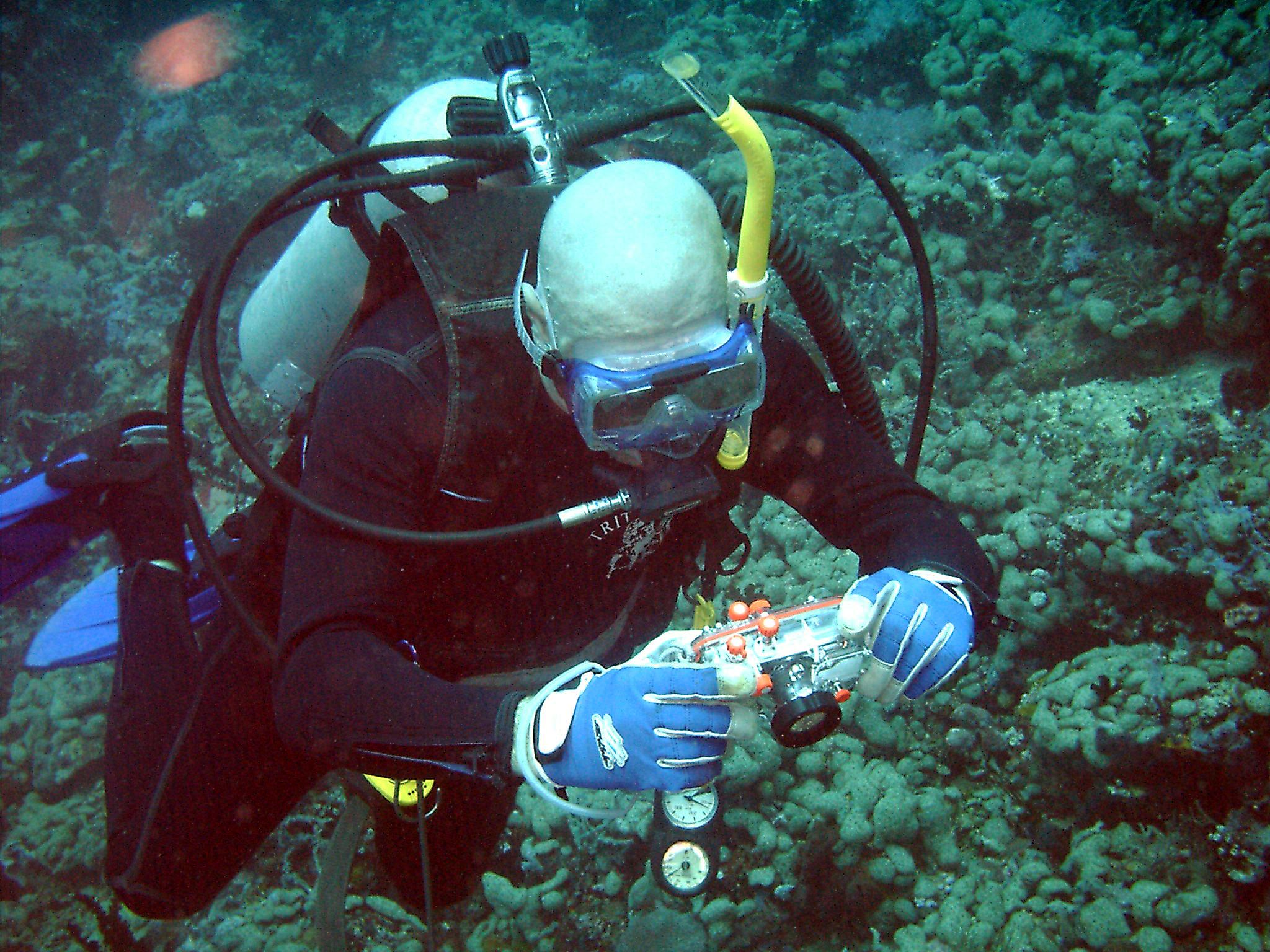 Dive 28 Philippines Mindoro Verdi Island June 2005 45