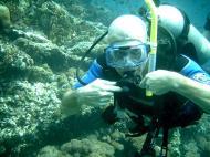 Asisbiz Dive 28 Philippines Mindoro Verdi Island June 2005 35