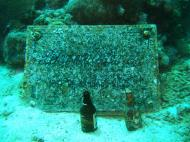 Asisbiz Dive 8 Philippines Mindoro Sabang Elma Jane wreck Oct 2005 37