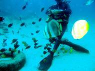 Asisbiz Dive 8 Philippines Mindoro Sabang Junk Nov 2005 08