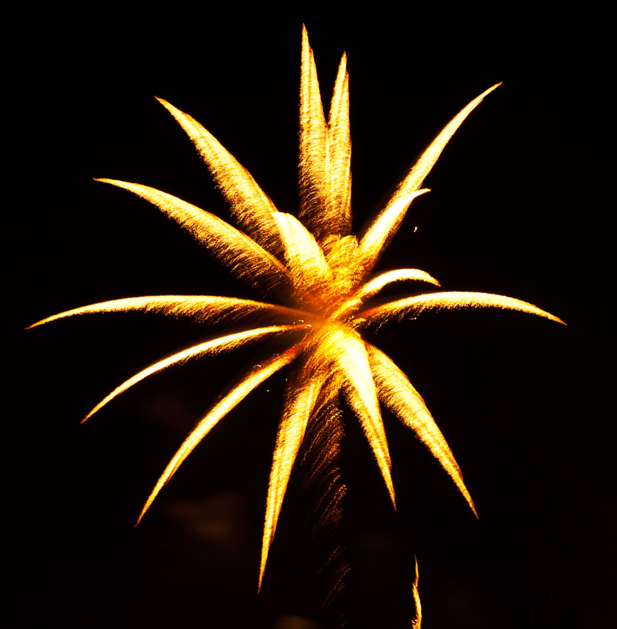 New Year 2011 Fireworks Makati Philippines 011