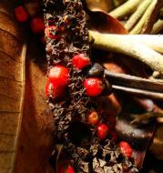 Asisbiz Philippines Fruits Berries Seeds 43