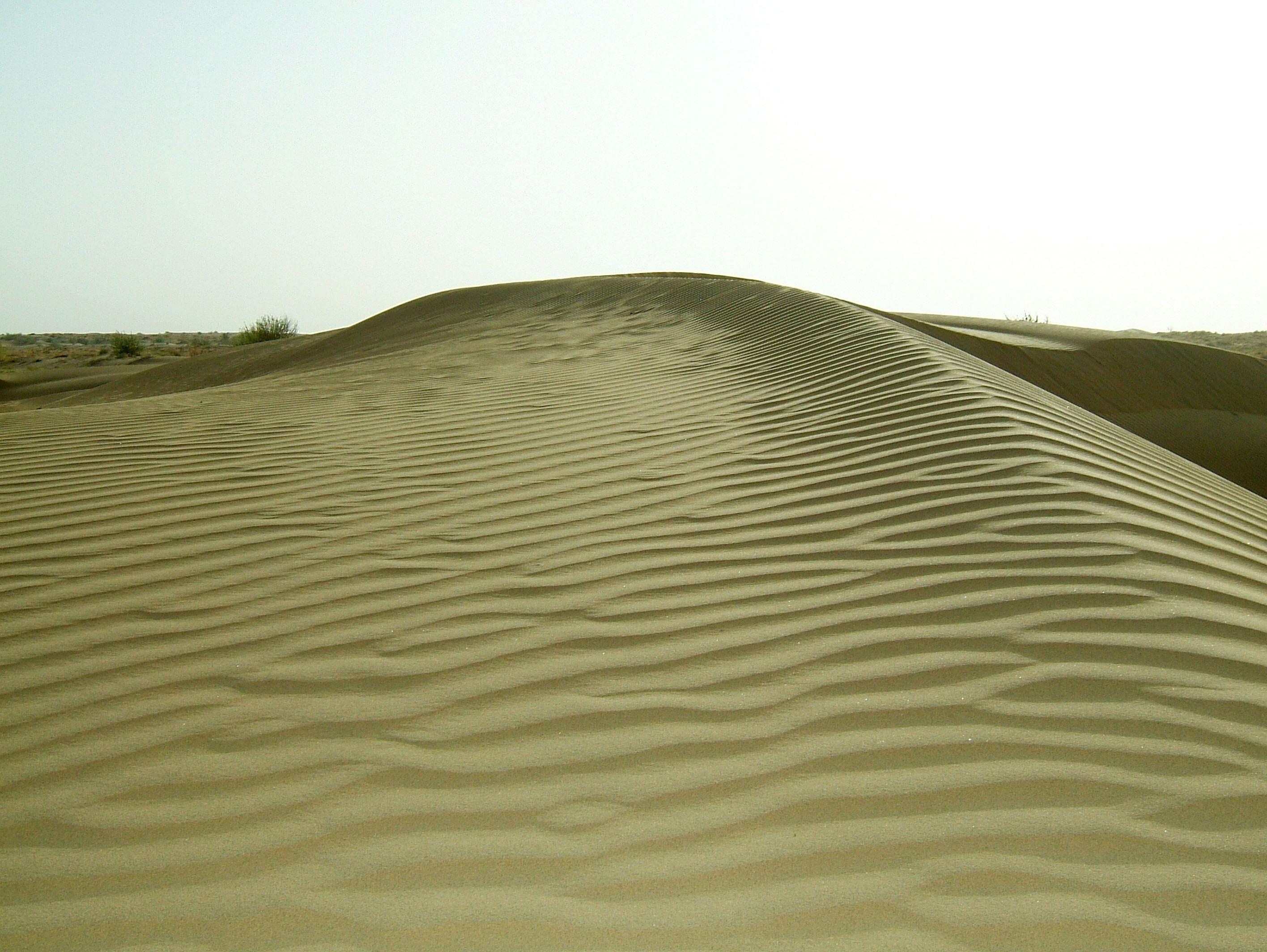 Textures Desert Sand India Rajasthan Jaisalmer 01