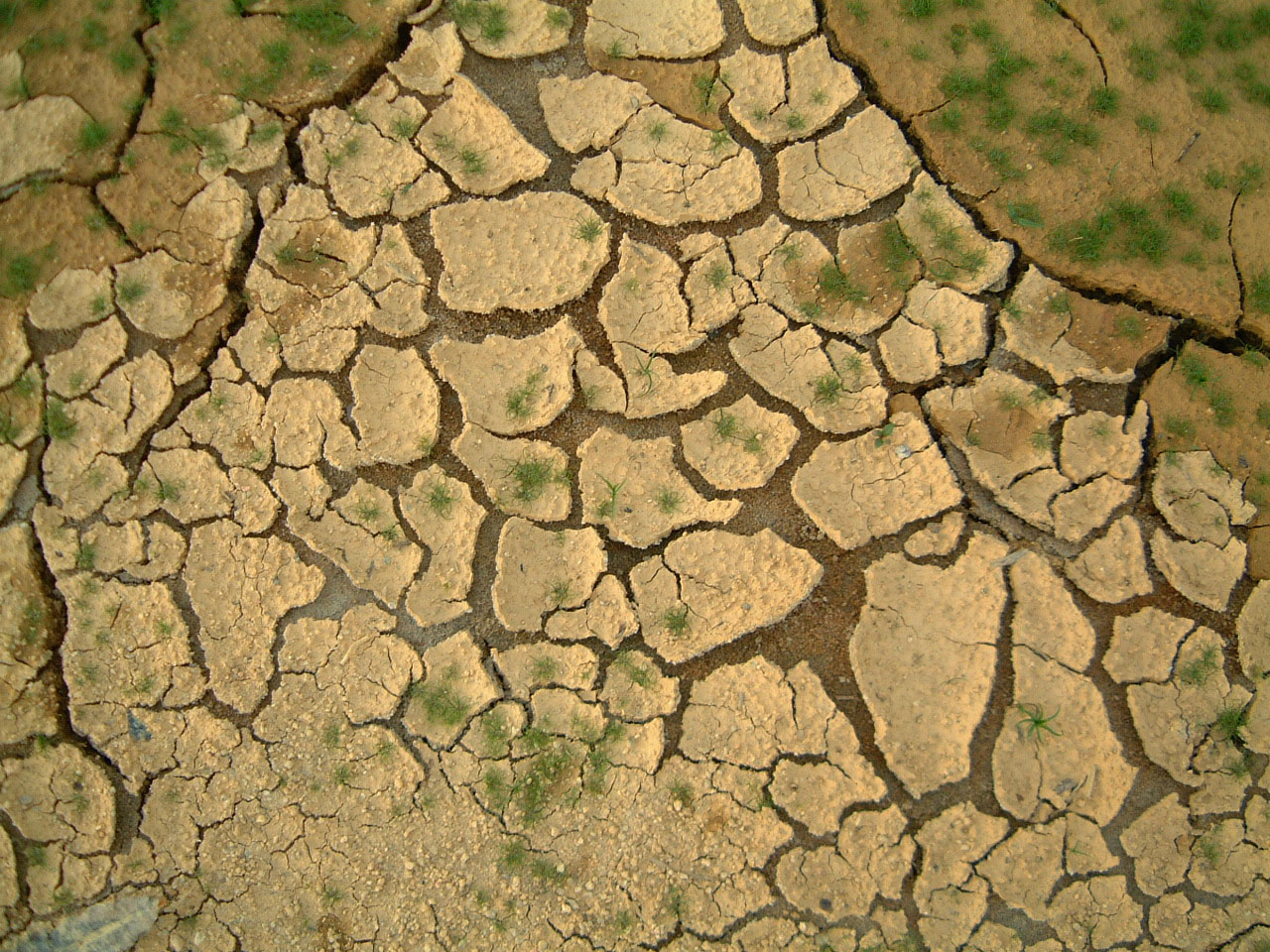 Textures Mud Clay Cracked Soil Earth 01