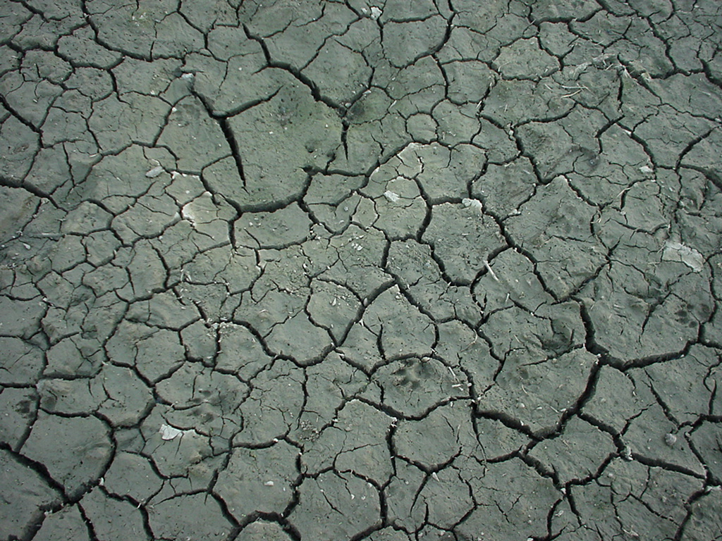 Textures Mud Clay Cracked Soil Earth 04