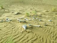 Asisbiz Textures Desert Sand India Rajasthan Jaisalmer 02