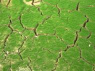 Asisbiz Textures Mud Clay Cracked Soil Earth 03
