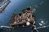 Asisbiz California Sea Lion Zalophus californianus Old Fishermans Grotto Wharf Monterey 57