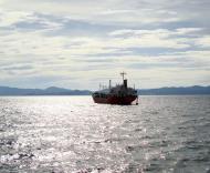 Asisbiz MV Sumilon Island Batangus Philppines 2010 03