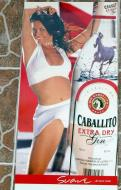 Asisbiz Sign Boards Advertising Panama Caballito extra dry Gin 01
