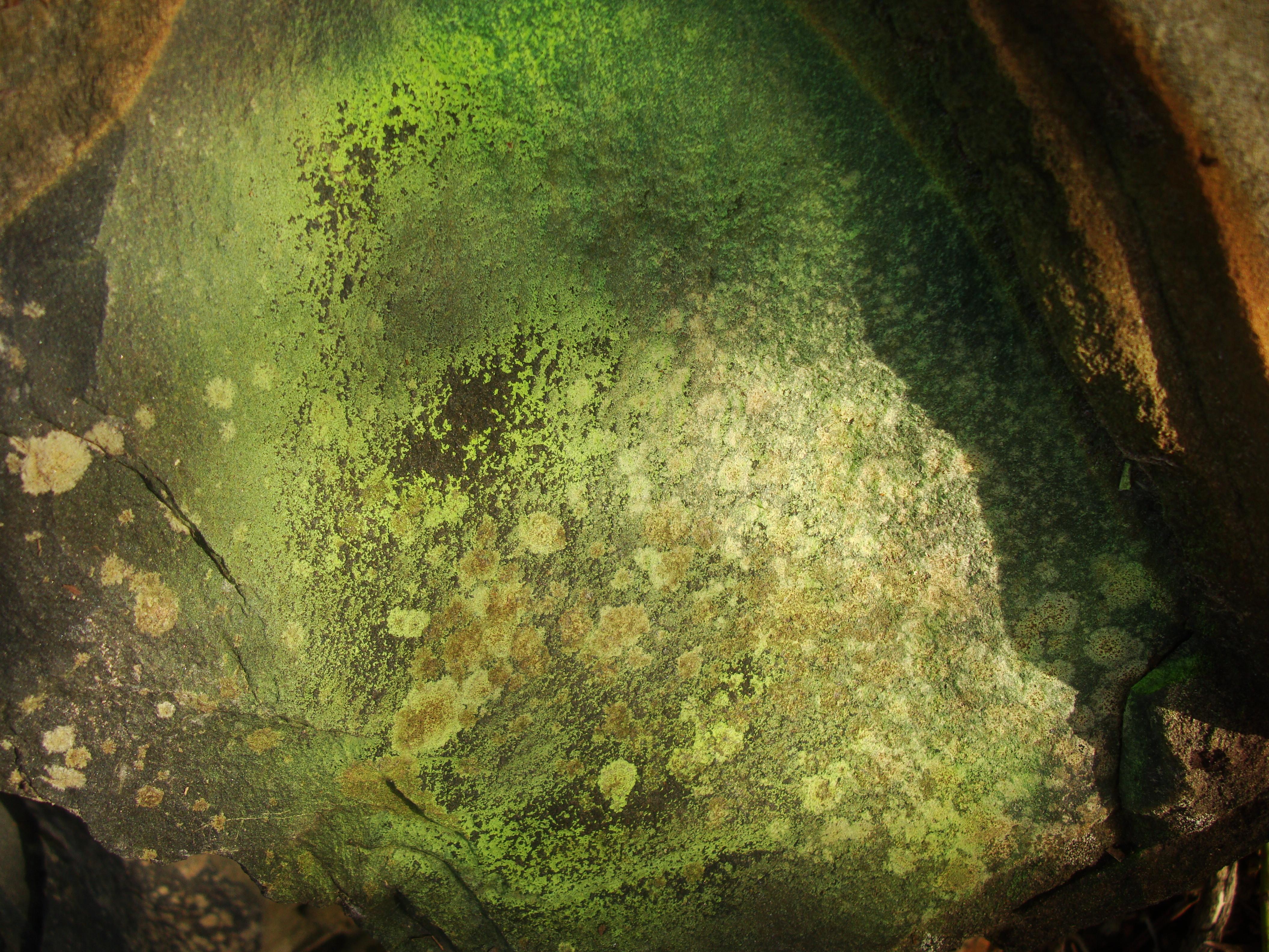 Textures Rocks Stones Pebbles Noosa National Park 25