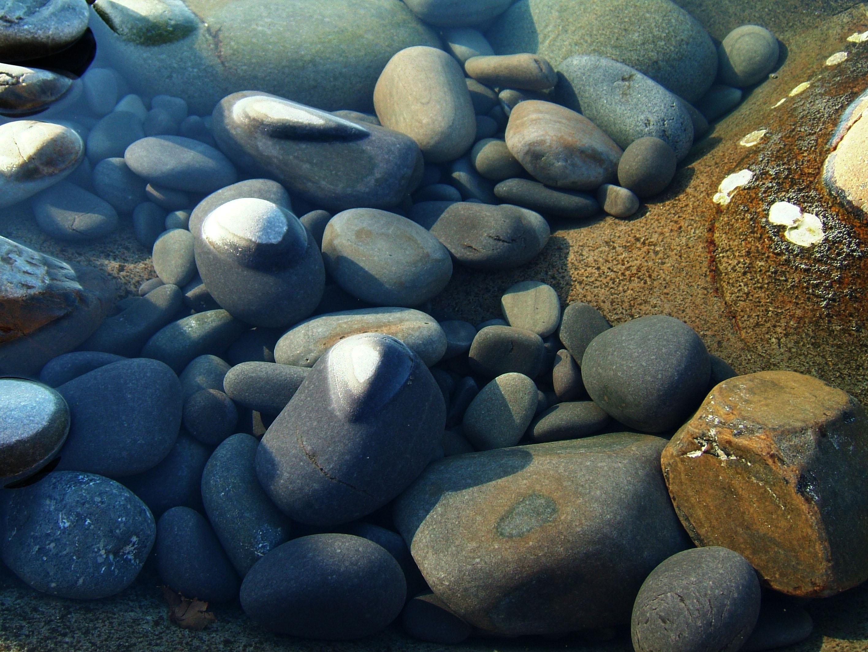 Textures Stones Pebbles Noosa National Park 06